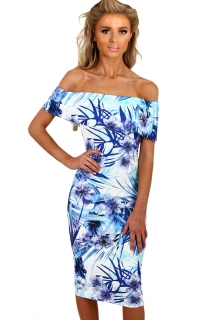 0e661a25d6e4 Dámské šaty s květinovým potiskem modrá ...